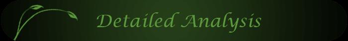 Detailed_Analysis_Title